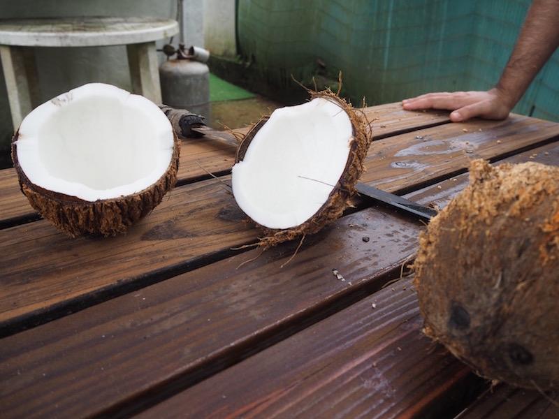 Polynésie noix de coco